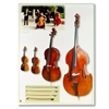 Strings Instrument Poster