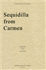 Sequidilla From Carmen Quartet